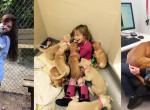 Ilyen az élet az állatmenhelyen - Szívmelengető képek önkéntesektől