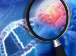 Ez az egészségesnek mondott étel növelheti az Alzheimer kockázatát