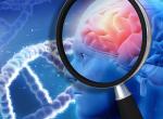 Az Alzheimer-kórhoz hasonló elváltozást idéz elő az agyban a koronavírus