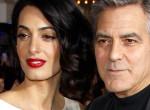 A dada kitálalt: Amal idomított majmot csinál George Clooney-ból