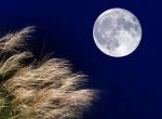 Közeleg az arató hold: így befolyásolja a lelki állapotunkat az égi jelenség