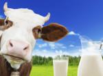 Háromszor annyiba kerülhet a tejföl, mint amennyit most fizetünk érte