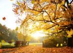 Idén hamar jön az ősz, ekkorra várható a változás az időjárásban