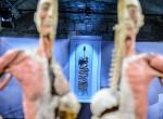 11 döbbenetes tény az emberi testről, amit nem tanultál biológián