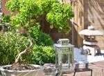 Teremts oázist az otthonodból – A Bonsai gondozása