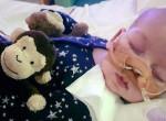 Döntött a bíróság: lekapcsolják a kisbabát a gépekről