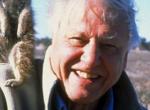 David Attenborough 93 éves! 8 dolog, amit biztosan nem tudtál a világhírű természettudósról