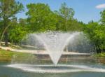 Nagyerdő, te csodás! Tele van élettel Debrecen leggyönyörűbb parkja