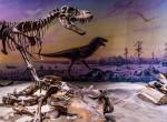 Olyan dinoszaurusz maradványaira bukkantak, mely áttétes csontrákban szenvedett