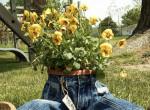 A legújabb őrület - Farmernadrágba ültetett virágcserepek