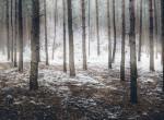 Ilyet még nem láttál: Fekete hó borított be három várost – fotók!