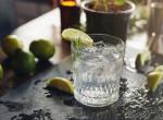 Mennyire tartod keserűnek a gin-tonikot? Ezt árulja el intelligenciádról
