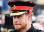 Harry herceg exe megjelent a vörös szőnyegen: Mindenkinek elállt a lélegzete