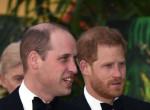 Vilmos hevesen ellenezte Harryék házasságát, döbbenetes kéréssel fordult öccséhez