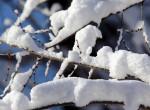 Nincs mese, itt a tél - Ezeken a területeken havazhat ma