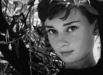 A férfi, aki teljesítette Audrey Hepburn utolsó kívánságát - 28 éve távozott a múzsa