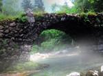 Egy titokzatos híd, ahol kutyák százai vetik magukat a mélybe: Az Overtoun rejtélye