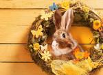 Újra itt a tavasz? Ilyen idő lesz húsvétkor