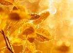Nem sokáig élvezhetjük a napsütést – Ekkortól várható újra csapadék