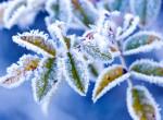 Napi időjárás: Hóviharral és erős széllel jönnek a kemény mínuszok