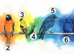 Válassz egy madarat! Megmutatja, mire van most a legnagyobb szükséged!