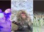 Kihagyhatatlan: Ilyen csodaszép hely télen Japán szigetországa