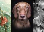 A legjobb programok télre: Kiállítás ajánló az év utolsó hónapjára