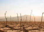 Ennyire felkészült Magyarország a klímaváltozással kapcsolatban