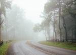 Borult ég és sok csapadék: így alakul mai időjárásunk