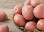 Mennyei harapnivalók: 3 krumplis étel ugyanabból a 4 hozzávalóból