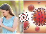 Ha ez a rovar megcsíp, a koronavírushoz hasonló tüneteid lehetnek