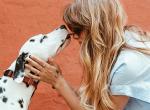 Örökbefogadási kalauz: ezekre figyeljünk, ha kutyát fogadunk örökbe