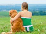 Ritka genetikai rendellenességgel született kutyusért van oda a fél internet - Fotók