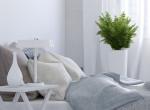 6 tipp, hogy pozitív energiák áramoljanak a lakásodban