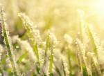 Messze még az igazi tavasz - Kemény mínuszokkal indul az április
