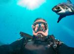 Te meg mernéd tenni? Így verte vissza a vérszomjas cápa támadását a szörfös