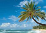 Klímavészhelyzet Hawaii partjainál: Az óceánban több a műanyag, mint a hal