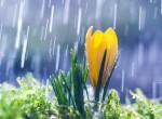 Hidegfront, záporok és reggeli fagyok: így folytatódik a szeszélyes április