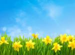 Így győzd le a tavaszi fáradtságot