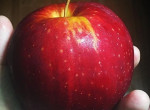Lassan eltűnik az üzletekből a piros alma - Nem találod ki, mi az oka