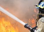 Kiskutyát mentettek ki a tűzoltók egy égő budapesti lakásból - Videó
