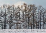 Brutális meglepetéssel indul 2020, nem várt fordulatot vesz időjárásunk