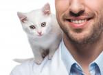 Valójában ezt gondolják a nők a macskás férfiakról