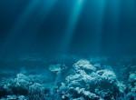 Elképesztő eredmény: A Föld legrégebbi élőlényeit keltették életre