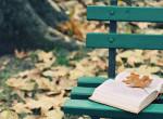 Októberi könyvajánló: 6 újdonság, amibe azonnal beleszeretsz