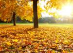 Meddig tart még a nyárias november? - Ilyen idő lesz a héten
