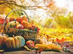 5 fura őszi zöldség, amit nem eszel gyakran, pedig kellene