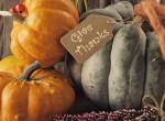 Így dobd fel az otthonod: Zseniális őszi dekorációk fillérekből