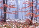 Jön a hideg: a héten már havazhat Magyarországon