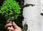 Pénztárcabarát tippek, amikkel rengeteg energiát megspórolhatsz otthonodban